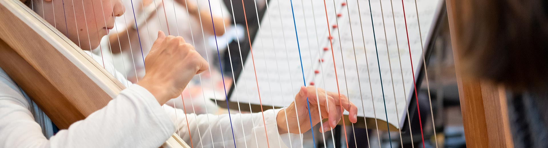 Zupfinstrumente – Musikschule Bayreuth