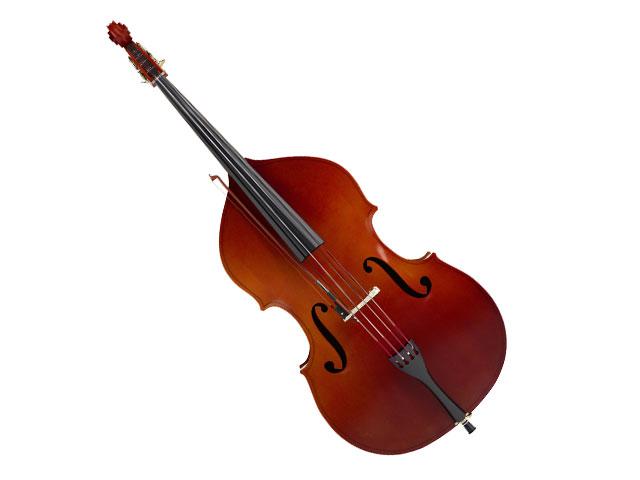 Musikschule Bayreuth – Kontrabass